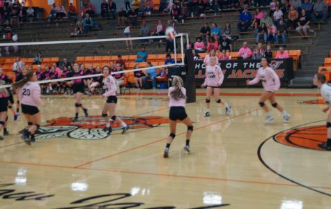 Chester Drops Pink-out Game