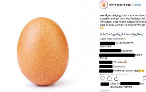 Egg Breaks World Record
