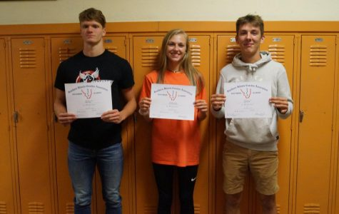 Three Earn All-South Honors