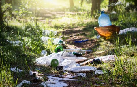 The Littering Issue in Southern Illinois