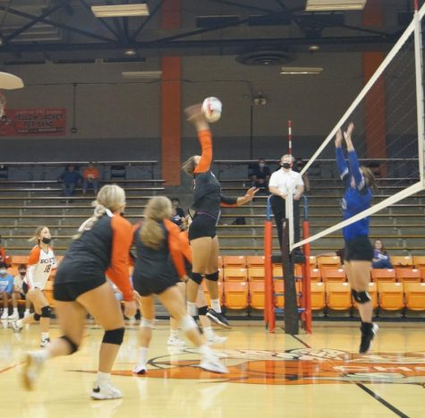 Kailyn Absher goes to the net against Steeleville.